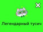 Статусы Вк Сберкот