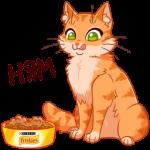 Рыжий кот Friskies